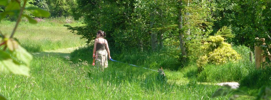 woman and dog enjoying a stroll in the dog and nature walk