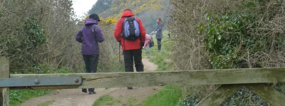 people setting off walking on footpath
