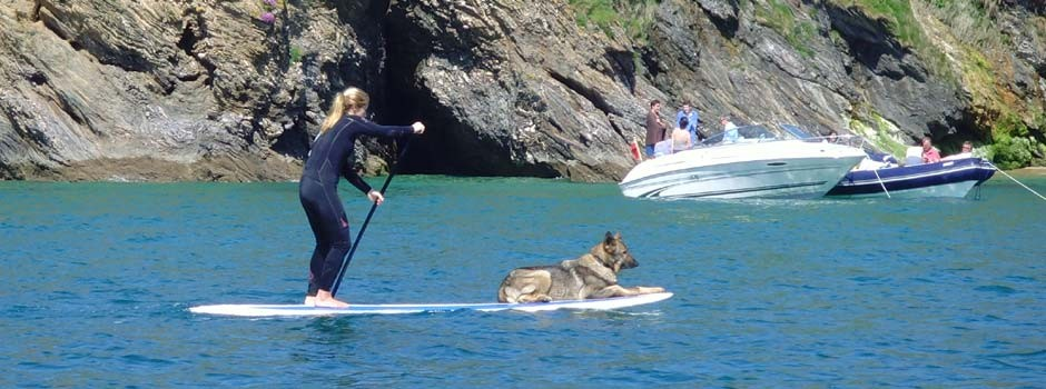 woman and alsatian dog out on the water on a stand-up paddleboard