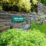 pick your own herb garden