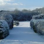 the unusual sight of snow at Trethem
