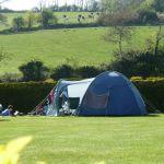 grass pitch 43